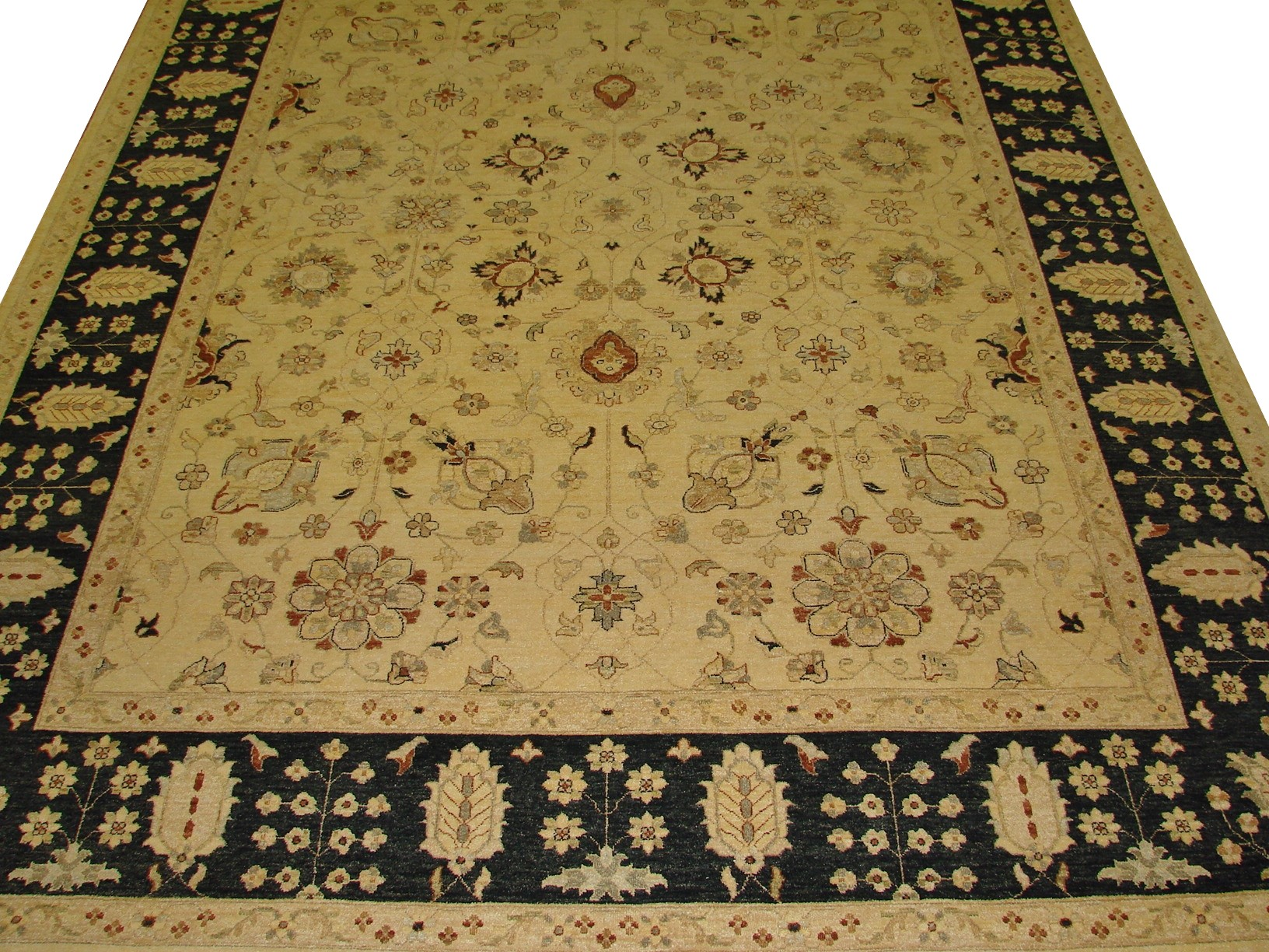 9x12 Traditional Hand Knotted Wool Area Rug - MR11213