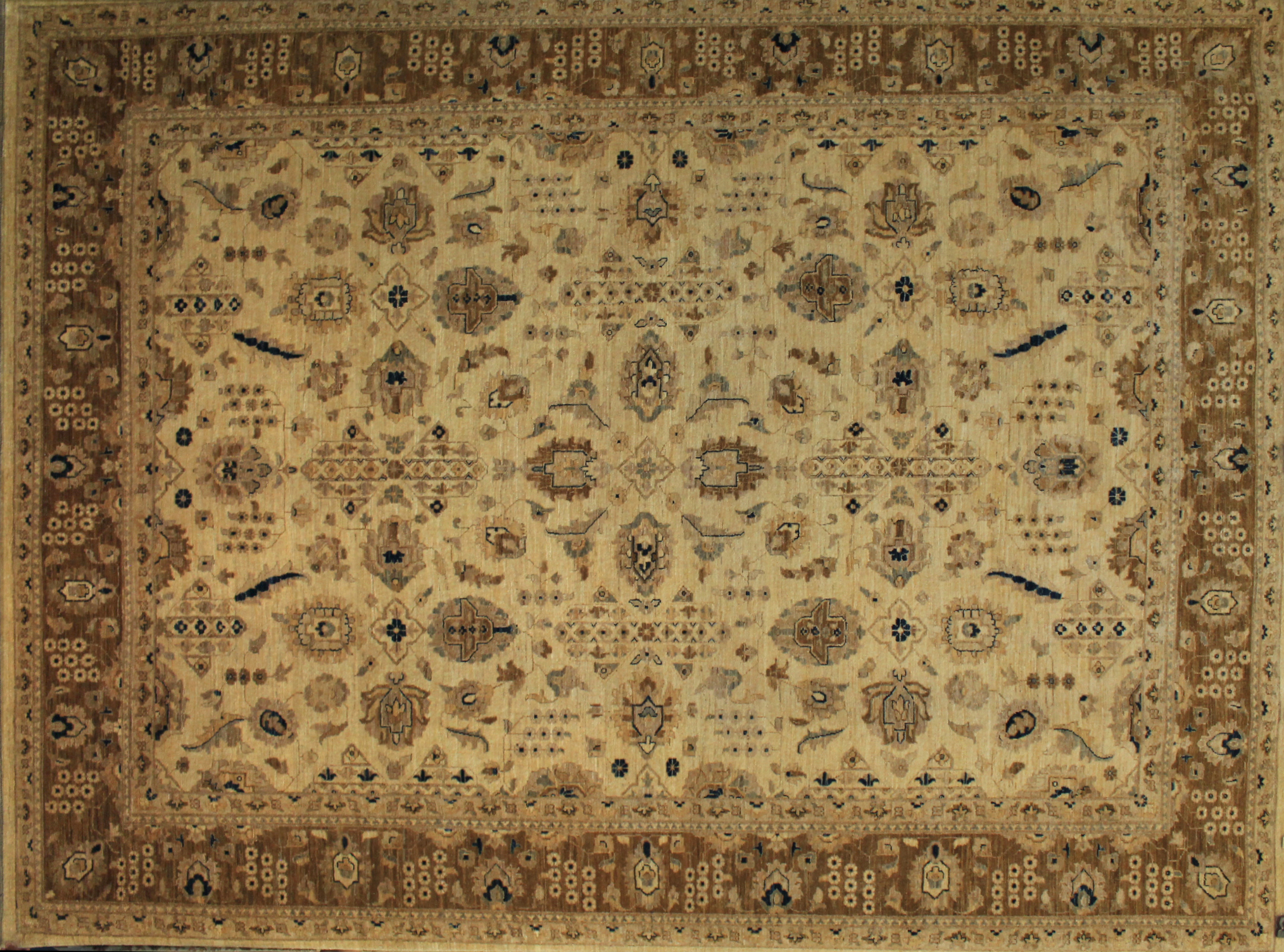 9x12 Peshawar Hand Knotted Wool Area Rug - MR9404